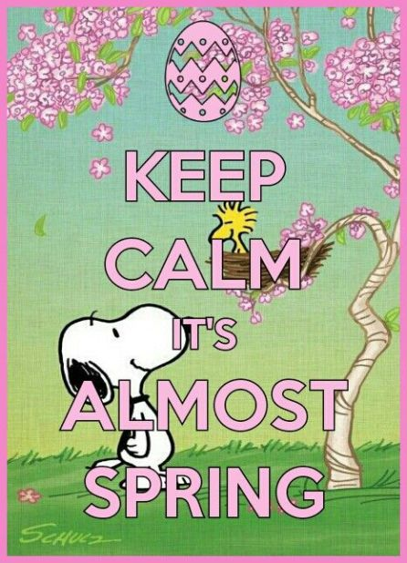 Image result for snoopy spring