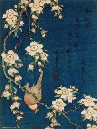 Goldfinch and Cherry Tree, c.1834 Art Print by Katsushika Hokusai at Art.com:
