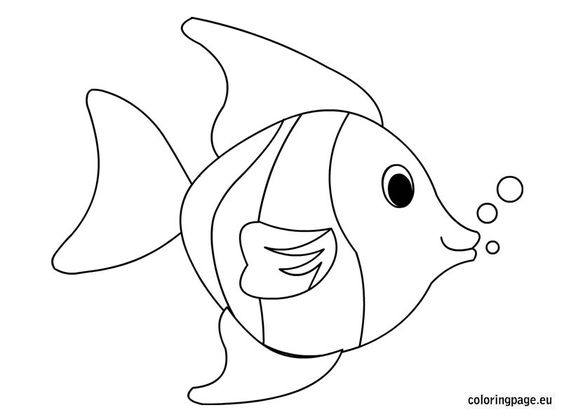 tropical fish coloring page  coloring page  summer
