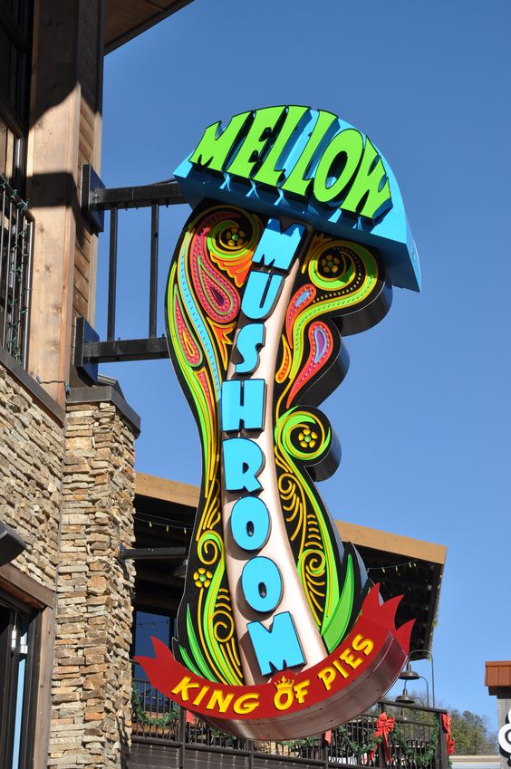 Try out some of the best pizza in town at the Mellow Mushroom. #Gatlinburg #Tennessee #dining: