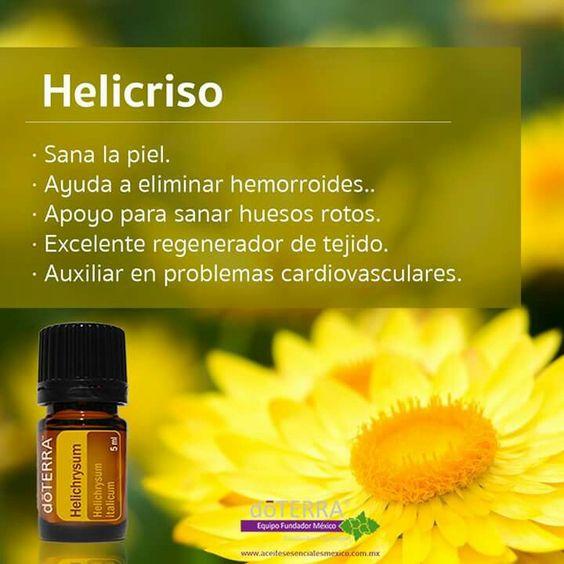 Helicriso