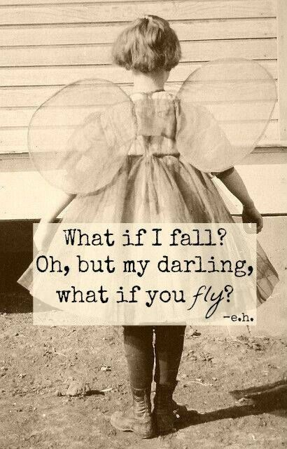 what if you fly: