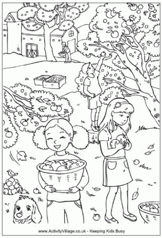 activity village a fall apple orchard coloring sheet activity