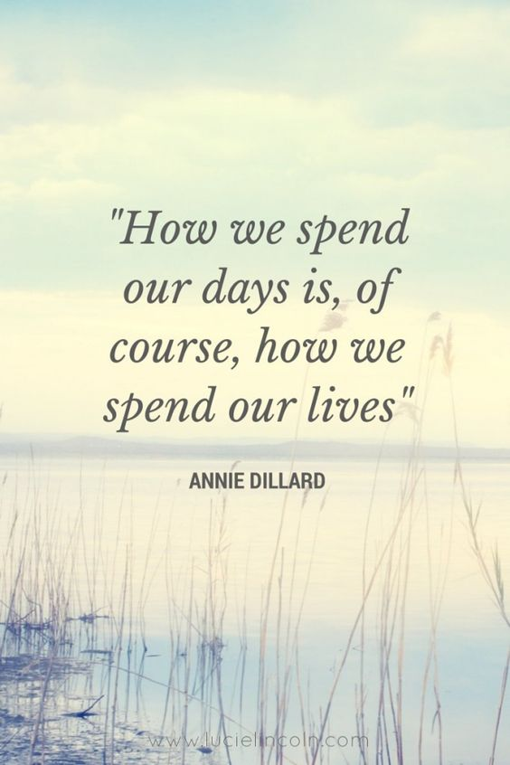 """How we spend our days, is of course how we spend our lives"" ~ Annie Dillard"