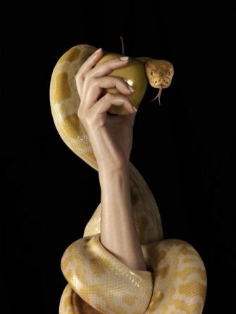 Eve, the apple and the serpent. Think upon this iconic triad.  The possibilities for involvement are multitudinous.: