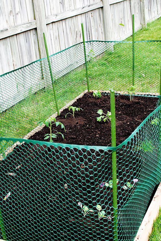 Gardens, Raised beds and Raised gardens on Pinterest
