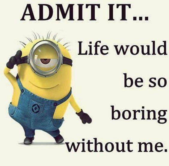 Top 40 Funny despicable me Minions Quotes: