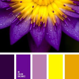 Yellow Colour Palette - Purple and Ochre