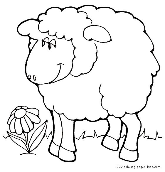 sheep coloring pages and animal coloring pages on pinterest