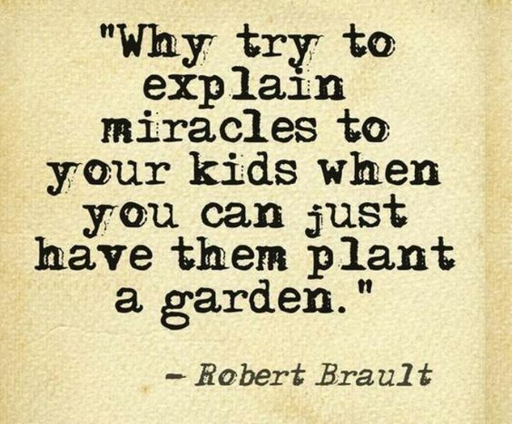 Quotes And Sayings About Gardening. QuotesGram