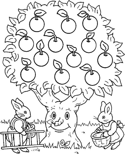 rabbit and apple tree coloring page kids coloring pages pinterest