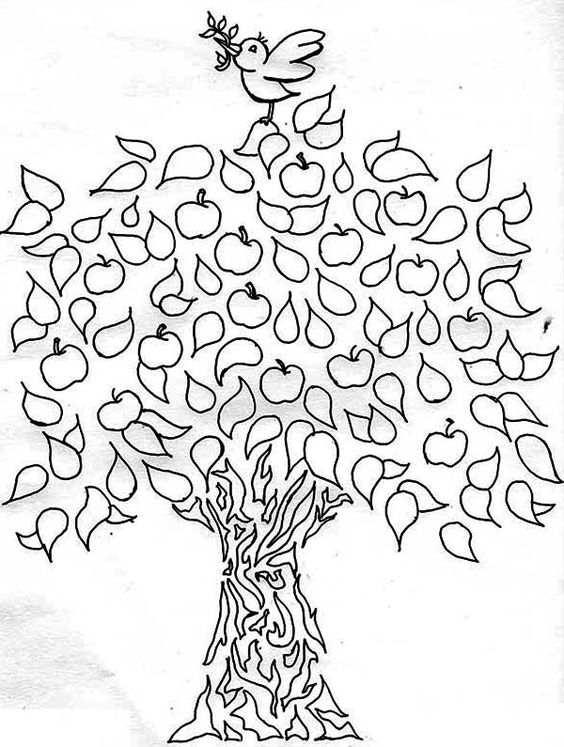 apple tree coloring pages and coloring on pinterest