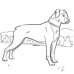 coloring pages coloring and dog games on pinterest