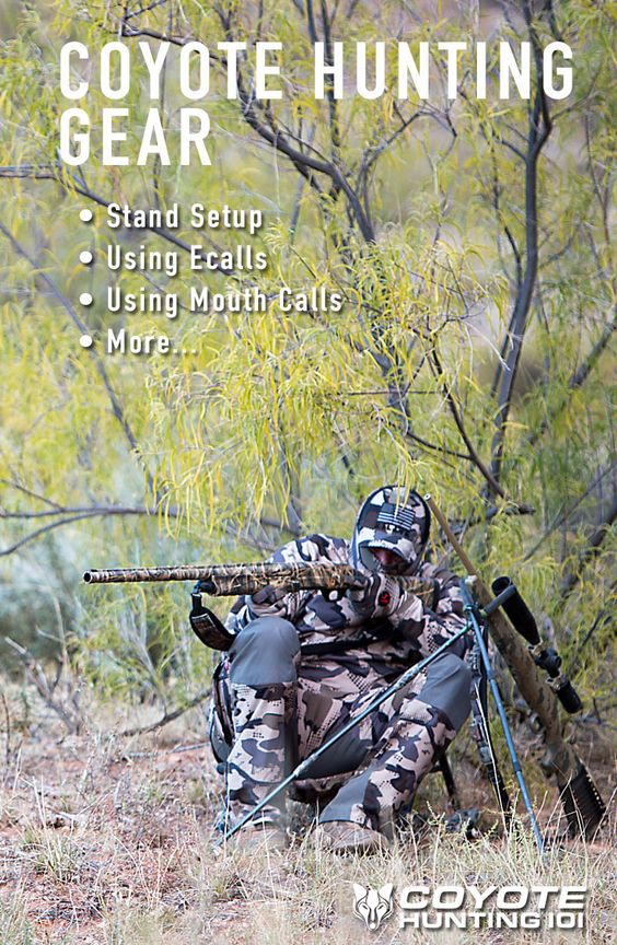 The Best Coyote Hunting Gear on the Market Coyotes, The