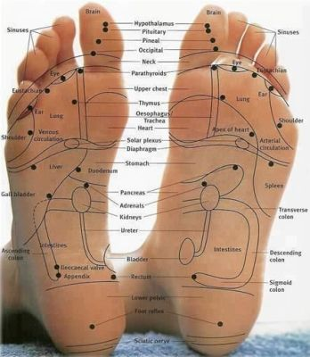 ACUPRESSURE POINTS IN FEET AND ANKLE