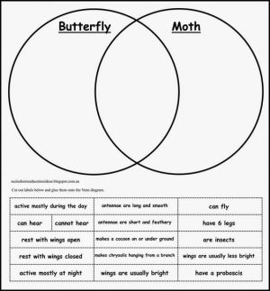 Life Cycle of a Moth  FREE Printables | Free printables, The o'jays and Butterflies