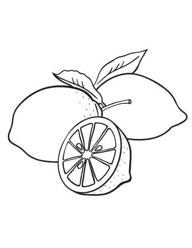 coloring lemon and coloring pages on pinterest