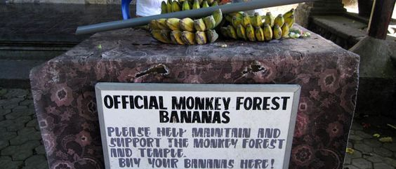 Sacred Monkey Forest Sanctuary: