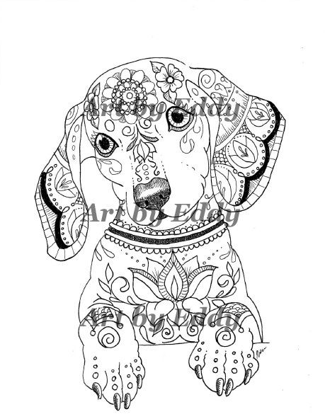 dachshund coloring books and coloring on pinterest