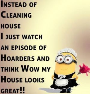 Image result for house cleaning memes