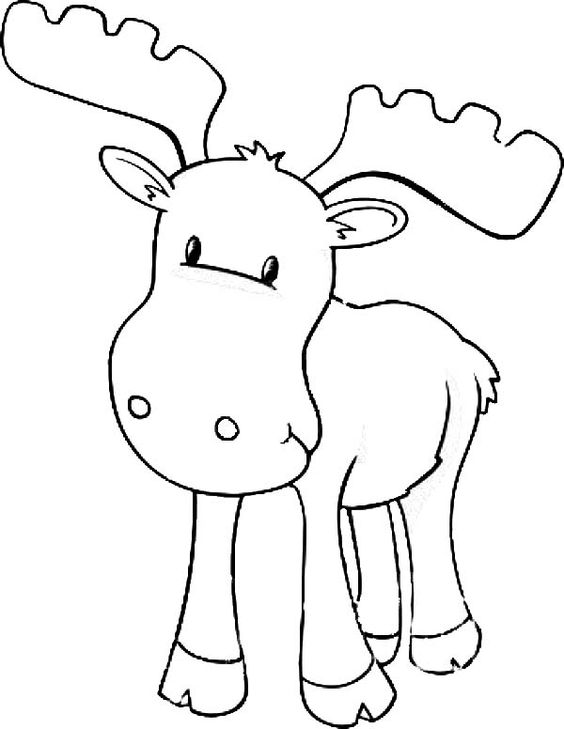 moose coloring pages and coloring on pinterest