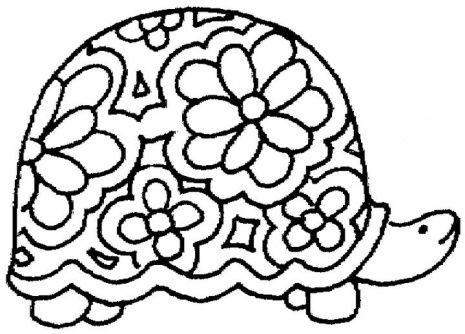 coloring pages coloring and turtles on pinterest