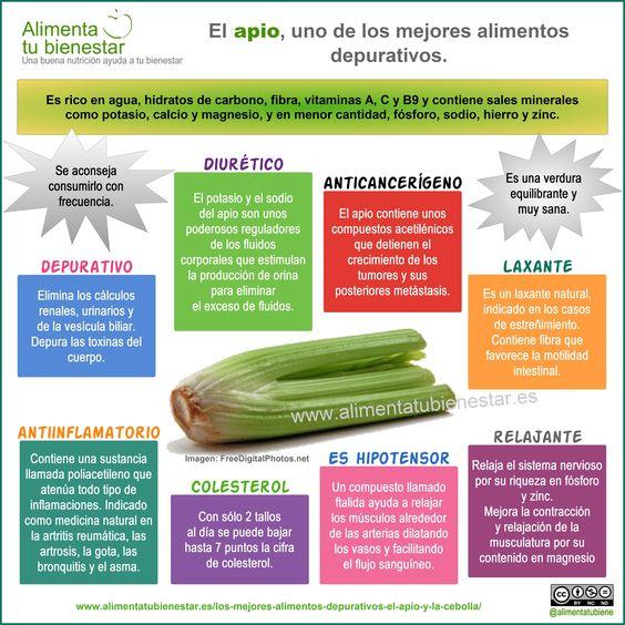 El apio es uno de los mejores alimentos depurativos. #infografia Propiedades del #apio: