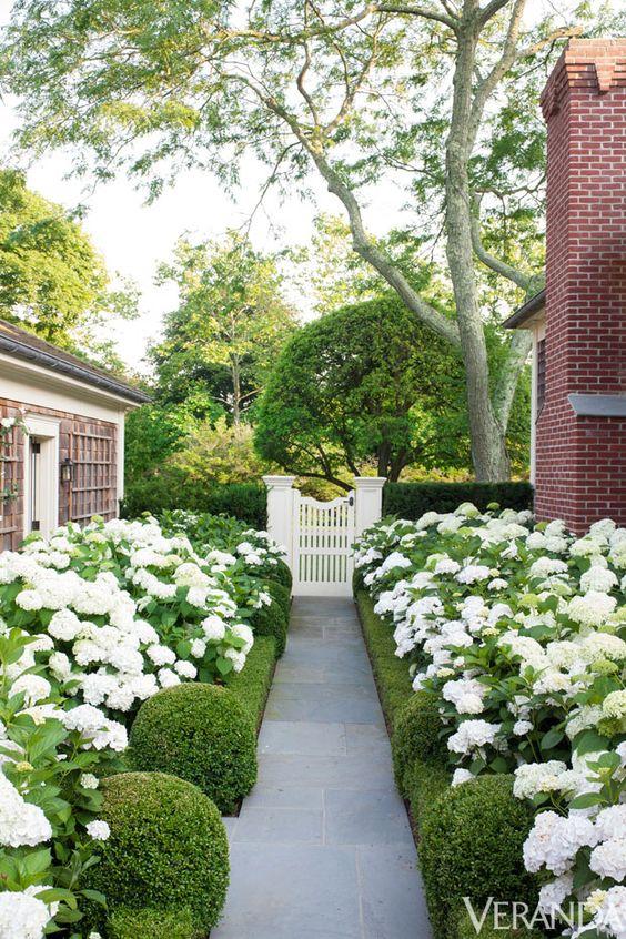 Hydrangeas, bluestone and a garden gate.....really like the simplicity, very elegant: