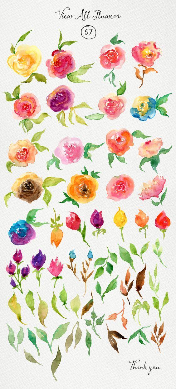 Watercolor Roses DIY by Webvilla on Creative Market Art