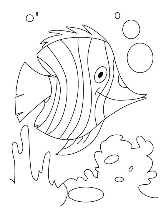 coloring pages coloring and fish on pinterest