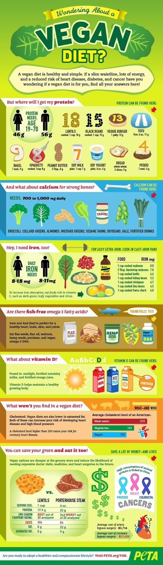 Infographic How to Go Vegan Protein, Nutrition tips and