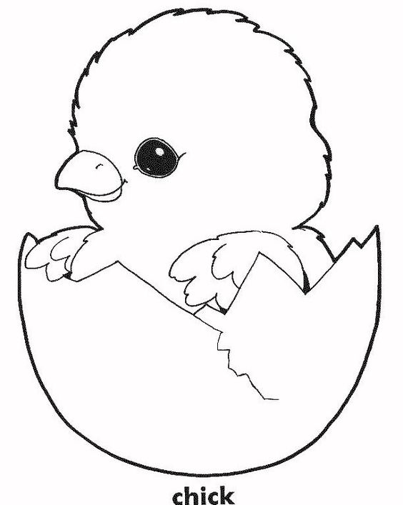 easter chick coloring sheet  baby chick coloring page