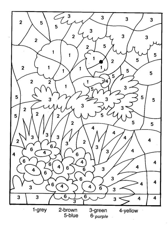 color by numbers adult color by number and coloring pages for
