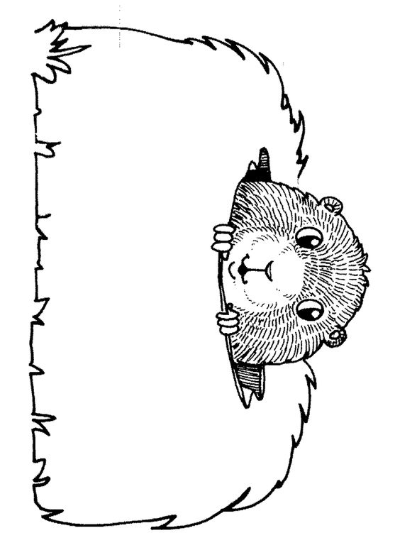 groundhog day coloring pages and coloring on pinterest