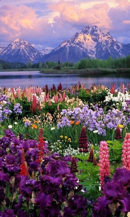 Grand Teton National Park: