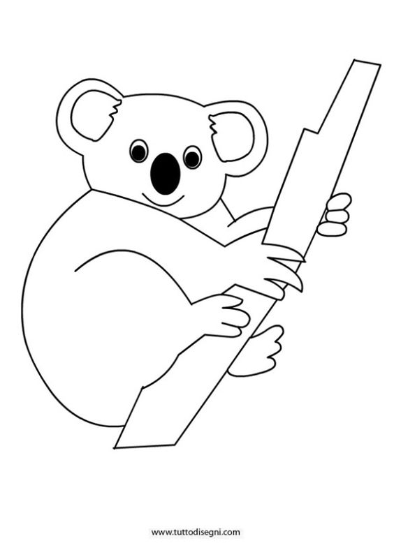 koalas coloring pages and coloring on pinterest