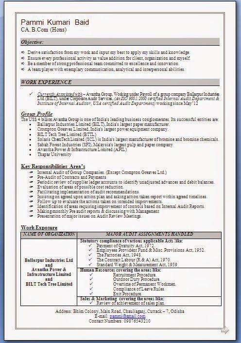 download resume format pdf excellent curriculum vitae resume cv format