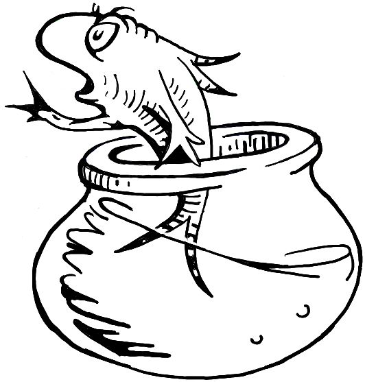 dr seuss fish bowl coloring page how to draw the fish from the cat in