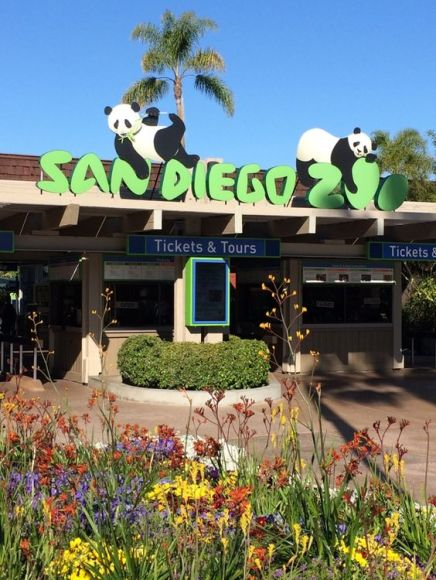 San Diego Zoo is things to do around San Diego University!