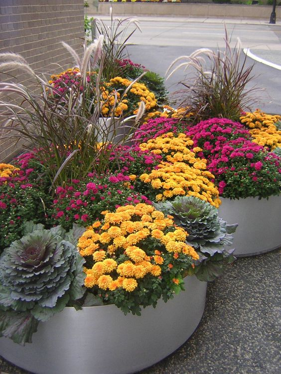 Fabulous Fall Flowers Container Ideas: