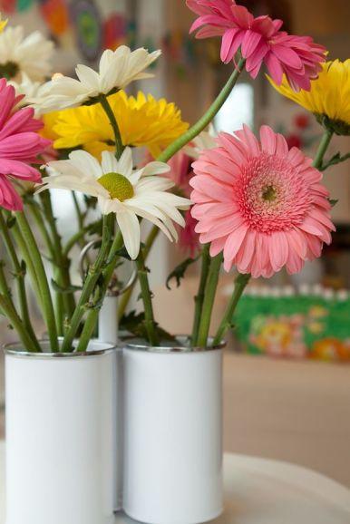 Gerbera Daisy plantas para el dormitorio