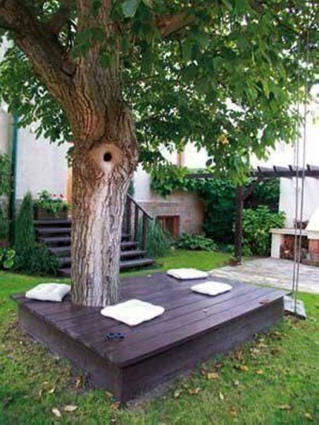 un'ampia panca attorno al tronco di un grande albero