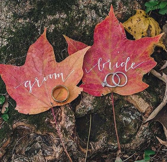 A wonderful idea for an Autumn #Wedding! There's nothing quite like celebrating your special day in #nature!: