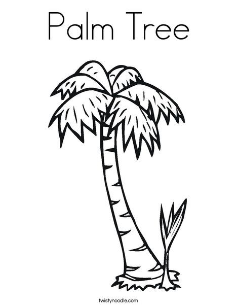 palm tree coloring page  luau party craft  pinterest