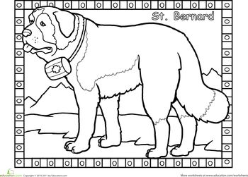 coloring pages coloring and dog breeds on pinterest