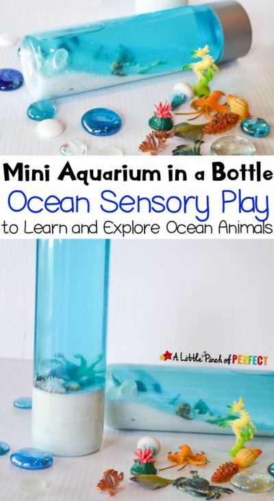 Sensory Bottles, DIY Sensory Bottles, Sensory Bottle Projects, How to Make Your Own Sensory Bottles, Making Your Own Sensory Bottles, Crafts, Crafts for Kids, Craft Hacks for Kids, Popular Pin