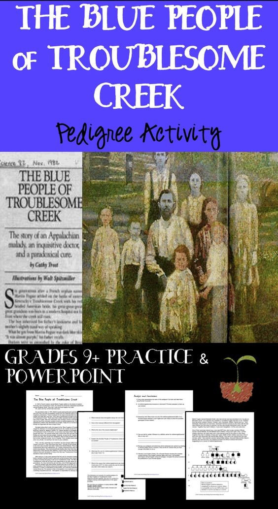 Pedigree Practice The Blue People of Troublesome Creek
