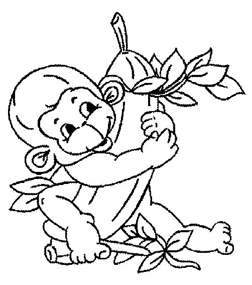 coloring pages monkey and page 3 on pinterest