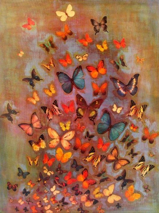 Resultado de imagen para mariposas y despertares