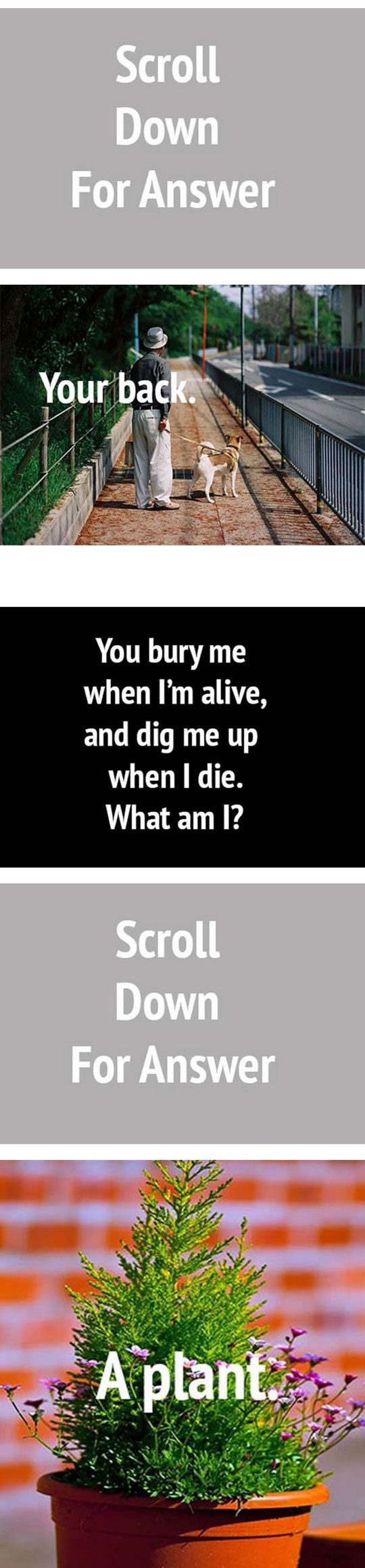 Riddles, Bury and First time on Pinterest